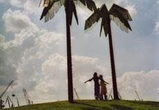 Vodič Filiz sa svojom rođakinjom Polly na otoku palmi foto: arhiva projekta Park Fiction Margit Czenki, ljeto 2003.